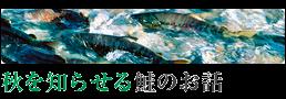 20131029_鮭_top(set)