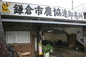 20131014_鎌倉市農協連4